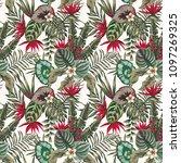 exotic tropical plants banana... | Shutterstock .eps vector #1097269325