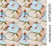 white hibiscus flower pattern ... | Shutterstock . vector #1097285255