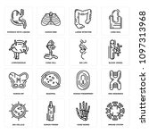 set of 16 simple editable icons ...   Shutterstock .eps vector #1097313968