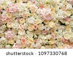 background white yellow pink... | Shutterstock . vector #1097330768