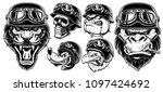 set of animals bikers. design... | Shutterstock .eps vector #1097424692