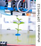 young plant growing.3d printer... | Shutterstock . vector #1097449112