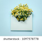 opened envelop with chamomile... | Shutterstock . vector #1097578778