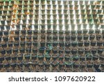 vertical used hanging plant... | Shutterstock . vector #1097620922