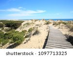 wooden path in coto de donana... | Shutterstock . vector #1097713325
