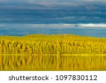 wonderful forest in the sun and ... | Shutterstock . vector #1097830112