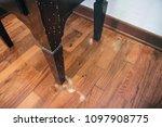 common furniture beetle damage  ... | Shutterstock . vector #1097908775