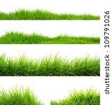 grass | Shutterstock . vector #109791026