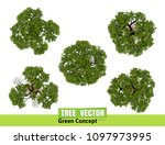 trees top view for landscape... | Shutterstock .eps vector #1097973995
