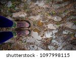 two feet standing on a muddy ... | Shutterstock . vector #1097998115