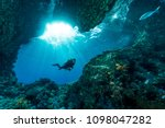 Woman Diver Underwater At The...