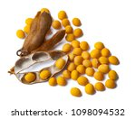 soybean pods isolated on white... | Shutterstock . vector #1098094532