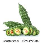 bitter melon  bitter gourd ... | Shutterstock . vector #1098190286