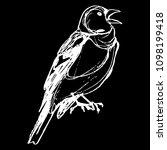 isolated vector illustration of ... | Shutterstock .eps vector #1098199418