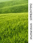 open countryside view of green... | Shutterstock . vector #1098247592