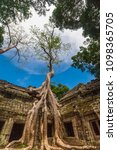 Small photo of The famous spot of the Ta Prohm temple (Rajavihara) in Angkor, Siem Reap, Cambodia; where the gallery ruin is held in a stranglehold of this tall Tetrameles tree with its huge strong roots.