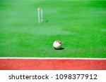 gateball in the outdoor park    Shutterstock . vector #1098377912