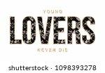 shiny slogan graphic | Shutterstock . vector #1098393278
