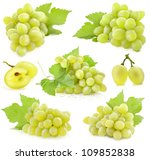 Collection Ripe Grapes Leaves Isolated - Fine Art prints