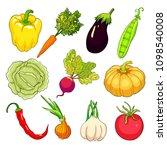 set  is vegetables ripe autumn. ... | Shutterstock .eps vector #1098540008