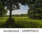 single tree in summer in front... | Shutterstock . vector #1098593015