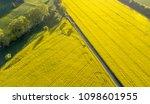 Yellow Rape Field Landscape...