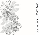 floral background with orchids...   Shutterstock .eps vector #1098625406