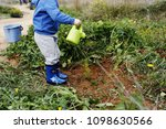 children planting trees in the... | Shutterstock . vector #1098630566