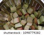 fresh rhubarb in a sieve | Shutterstock . vector #1098779282