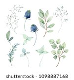Painted Watercolor Set Of...