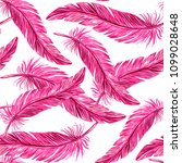 feathers of a flamingo bird ... | Shutterstock .eps vector #1099028648