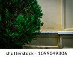 background suitable for design  ... | Shutterstock . vector #1099049306