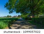 road in countryside  rural... | Shutterstock . vector #1099057022