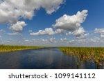 florida wetland in the...   Shutterstock . vector #1099141112