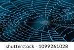 Wet Spiderweb With Beads Of Dew ...
