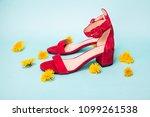Red Summer Women Shoes. Blue...