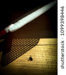 Small photo of Dead fly on the wood with the shadow of flapper