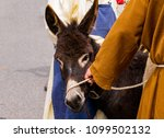 Monk Pulls On Donkey's Halter