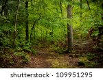 woods path | Shutterstock . vector #109951295