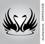 Couple. Beautiful Swans. Swan...