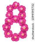 Small photo of Arabic numeral 8, eight, pink flowers of flax, isolated on white background
