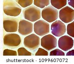 bee honeycombs. the structure... | Shutterstock . vector #1099607072