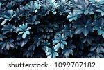 tropical leaf forest glow in... | Shutterstock . vector #1099707182