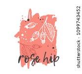 rose hip concept design. hand...   Shutterstock .eps vector #1099743452