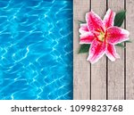 swimming pool and pink lily on... | Shutterstock . vector #1099823768