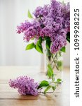 violet coloured lilac twigs in... | Shutterstock . vector #1099928225