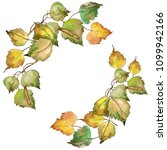 leaves birch in a watercolor... | Shutterstock . vector #1099942166