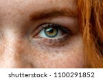 close up face of young red... | Shutterstock . vector #1100291852