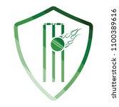 cricket shield emblem icon....