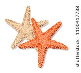 starfish isolated on white... | Shutterstock .eps vector #1100417738